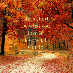 Life is short. Do what you love and love what you do