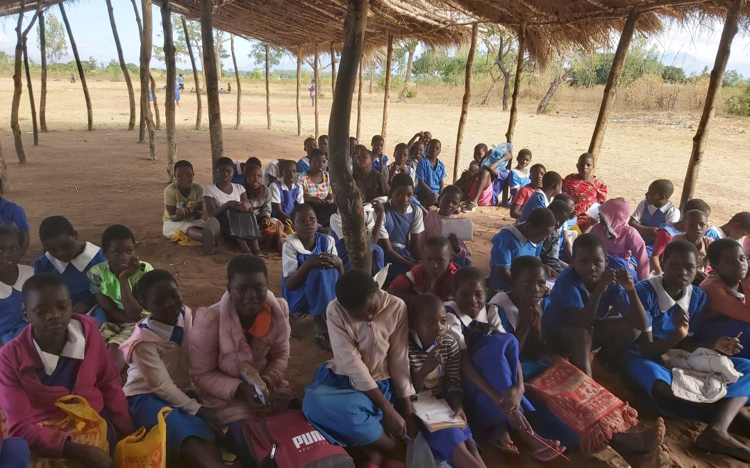 Looking ahead to Sitima Summer School 2020